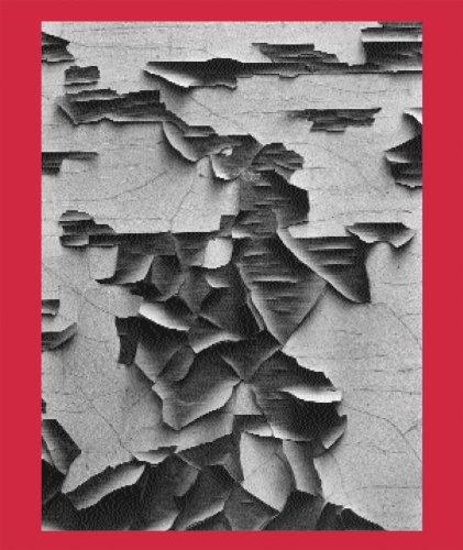 Aaron Siskind 100: Aaron Siskind; A Blind Spot Book