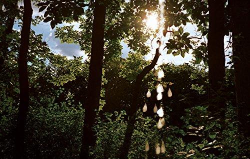 Pees on Earth: Ellen Jong, Annie Sprinkle,