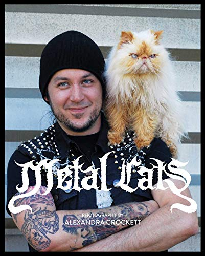 9781576876770: Metal Cats