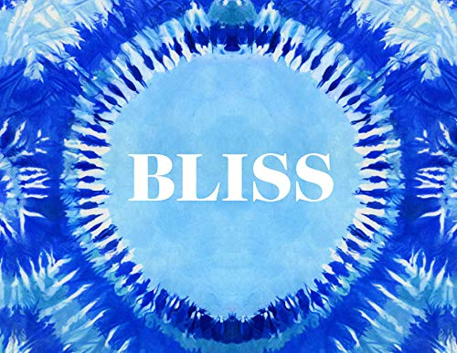 9781576877630: Bliss: Transformational Festivals & the Neo Hippie