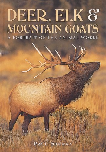 Deer, Elk, and Mountain Goats (A Portrait: Paul Sterry