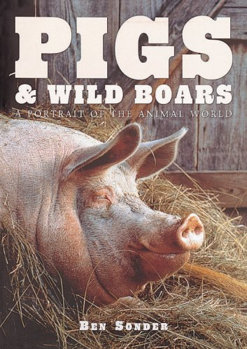 Pigs and Wild Boars ( A Portrait of the Animal World ) (1577170814) by Sonder, Ben