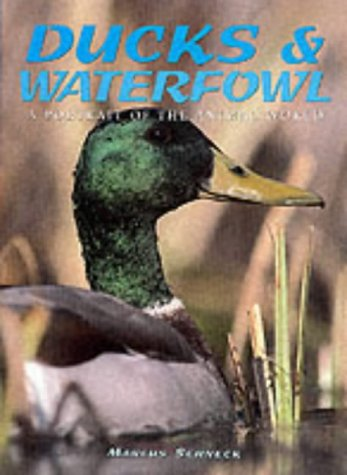 9781577171317: Ducks and Waterfowl (A Portrait of the Animal World)