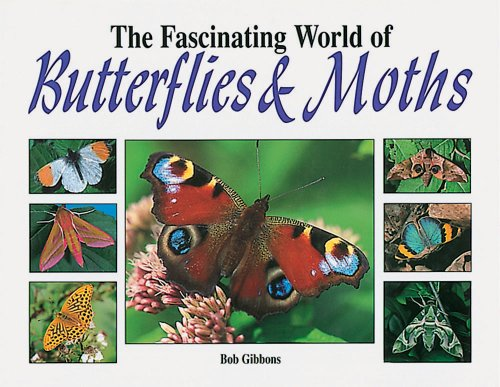 9781577171669: The Fascinating World of Butterflies and Moths