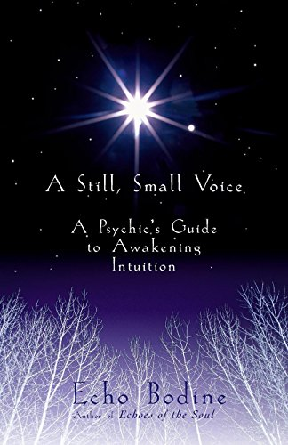 A Still, Small Voice: A Psychic's Guide to Awakening Intuition: Bodine, Echo