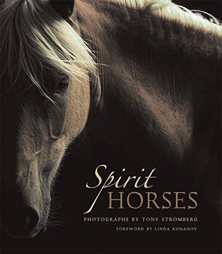 9781577314998: Spirit Horses