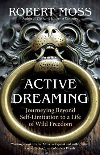 9781577319641: Active Dreaming: Journeying Beyond Self-limitation to a Life of Wild Freedom