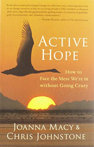 9781577319726: Active Hope : How to Face the Mess We're in without Going Crazy