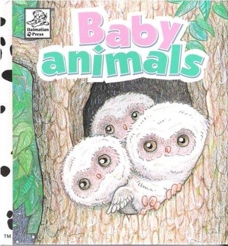9781577592587: Baby Animals