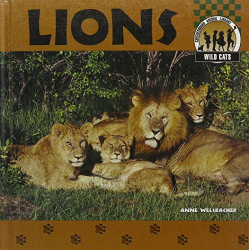 9781577650867: Lions (Wild Cats)