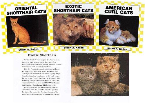 9781577652557: Cats Set 2