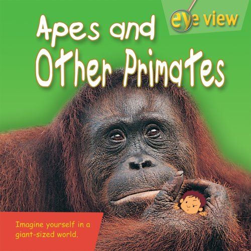 Apes and Other Primates (Eye View): Clarke, Brenda