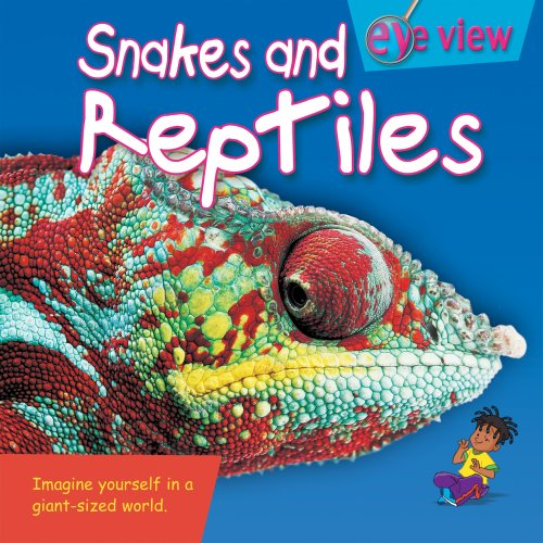 9781577685685: Snakes and Reptiles (Eye View)