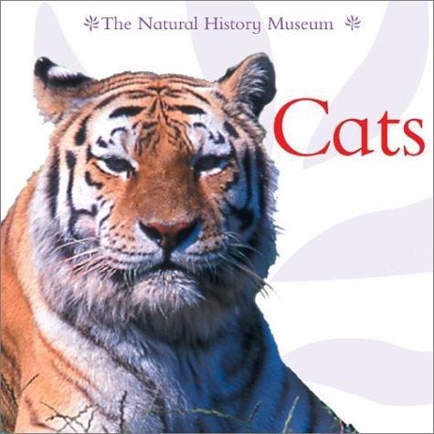 9781577689621: Cats
