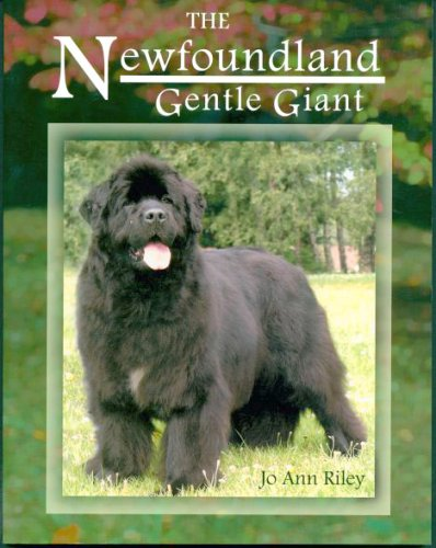 The Newfoundland: Gentle Giant