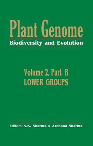 Plant Genome: Biodiversity and Evolutionvol. 2, Part B: Lower Groups: Sharma, A. K.