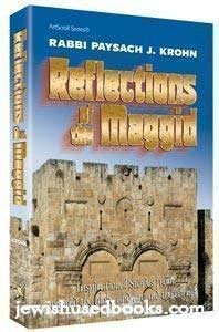 9781578197521: Reflections Of The Maggid