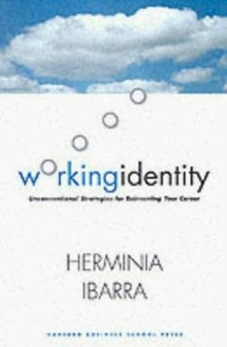 9781578517787: Working Identity: Unconventional Strategies for Reinventing Your Career