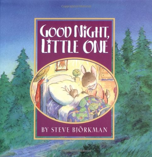 9781578562756: Good Night, Little One