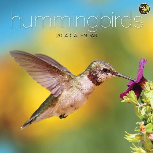 2014 Hummingbirds Wall Calendar