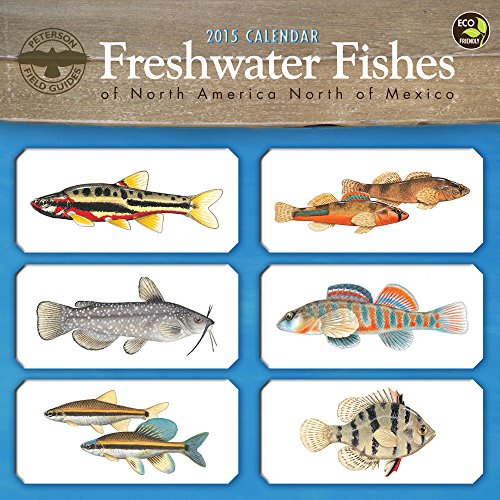 9781579002558: 2015 Freshwater Fishes Wall Calendar