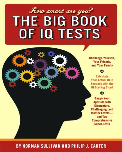 Big Book Of Iq Tests: How Smart: Sullivan, Norman