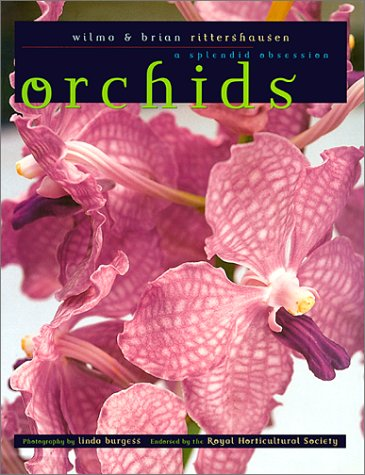 9781579590543: Orchids