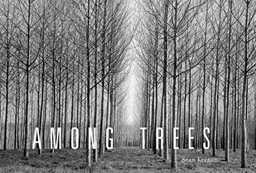 9781579652227: Among Trees