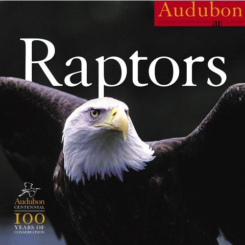 9781579653064: Audubon Raptors Calendar 2007