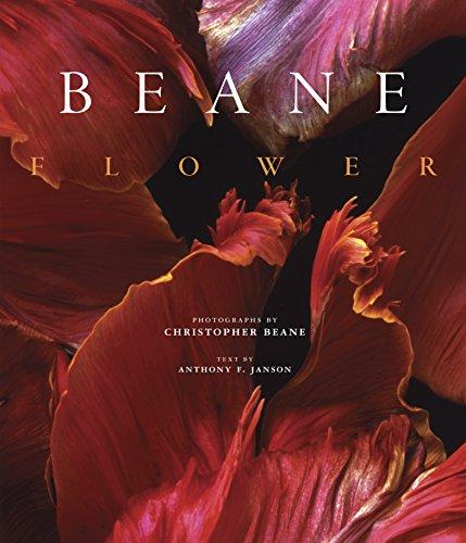 Flower: Beane, Christopher; Janson, Anthony F.