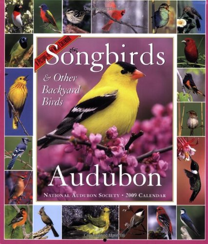 9781579653675: Audubon 365 Songbirds and Other Backyard Birds Picture-A-Day Calendar 2009 (Picture-A-Day Wall Calendars)