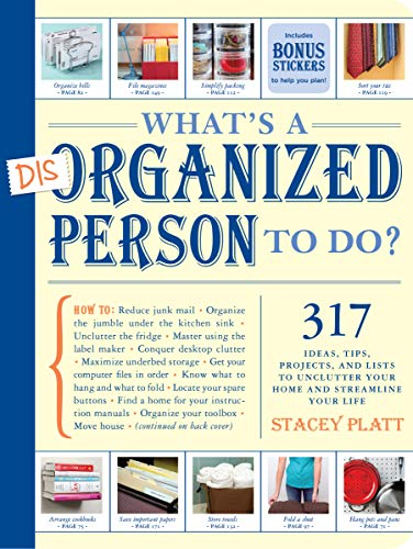 9781579653729: What's a Disorganized Person to Do?: 317 Ideas, Tips, Projects, and Lists to Unclutter your Home and Streamline your Life