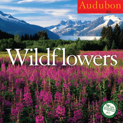 9781579654207: Audubon Wildflowers Calendar 2011