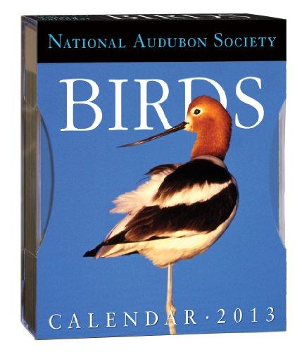 AUDUBON BIRDS GALLERY CALENDAR 2013: National Audubon Society
