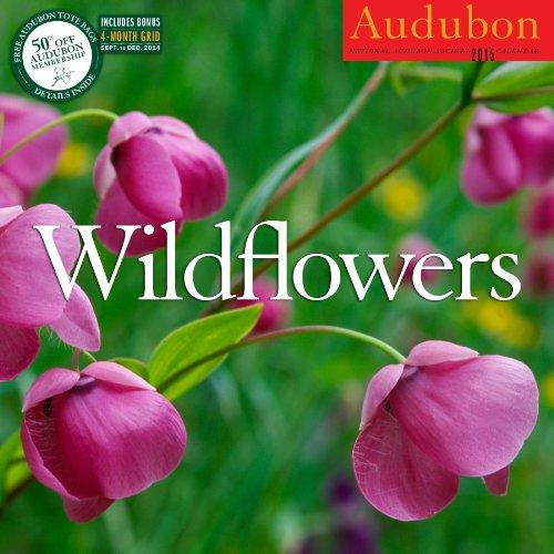 9781579655754: Audubon Wildflowers Calendar 2015