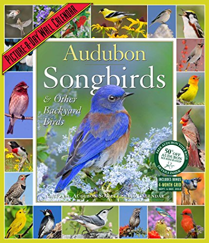 9781579656348: Audubon Songbirds & Other Backyard Birds Picture-A-Day Wall Calendar 2016