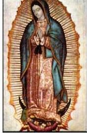 9781580022781: Our Lady of Guadalupe