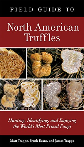 9781580088626: Field Guide to North American Truffles: Hunting, Identifying, and Enjoying the World's Most Prized Fungi