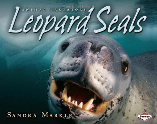9781580135405: Leopard Seals (Animal Predators)