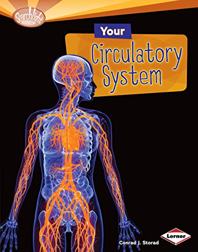 9781580139595: Your Circulatory System (Searchlight Books)
