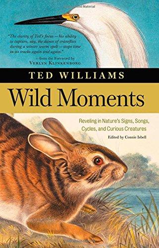 9781580175289: Wild Moments