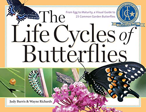The Life Cycles of Butterflies: From Egg to Maturity, a Visual Guide to 23 Common Garden Butterflies