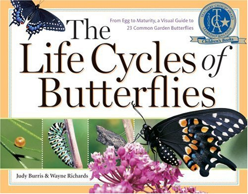 The Life Cycles of Butterflies: From Egg to Maturity, a Visual Guide to 23 Common Garden ...