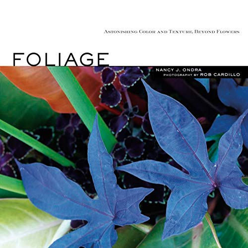 9781580176484: Foliage: Astonishing Color and Texture Beyond Flowers
