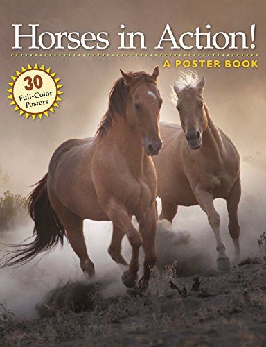9781580176668: Horses in Action!: A Poster Book (Poster Books)