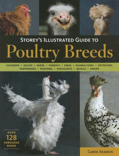 9781580176682: Storey's Illustrated Guide to Poultry Breeds