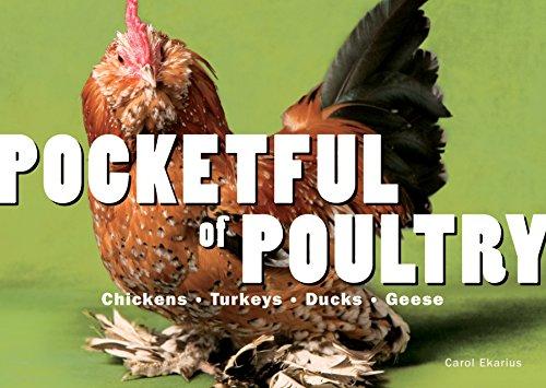 9781580176774: Pocketful of Poultry