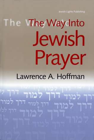 9781580230278: The Way Into Jewish Prayer