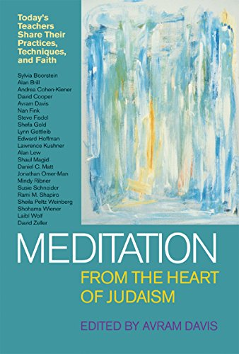9781580230490: Meditation from the Heart of Judaism: Today's Teachers Share Their Practices, Techniques, and Faith