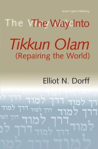 9781580232692: The Way Into Tikkun Olam (Repairing the World)